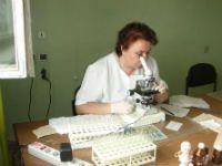 Микроскопия мазка крови
